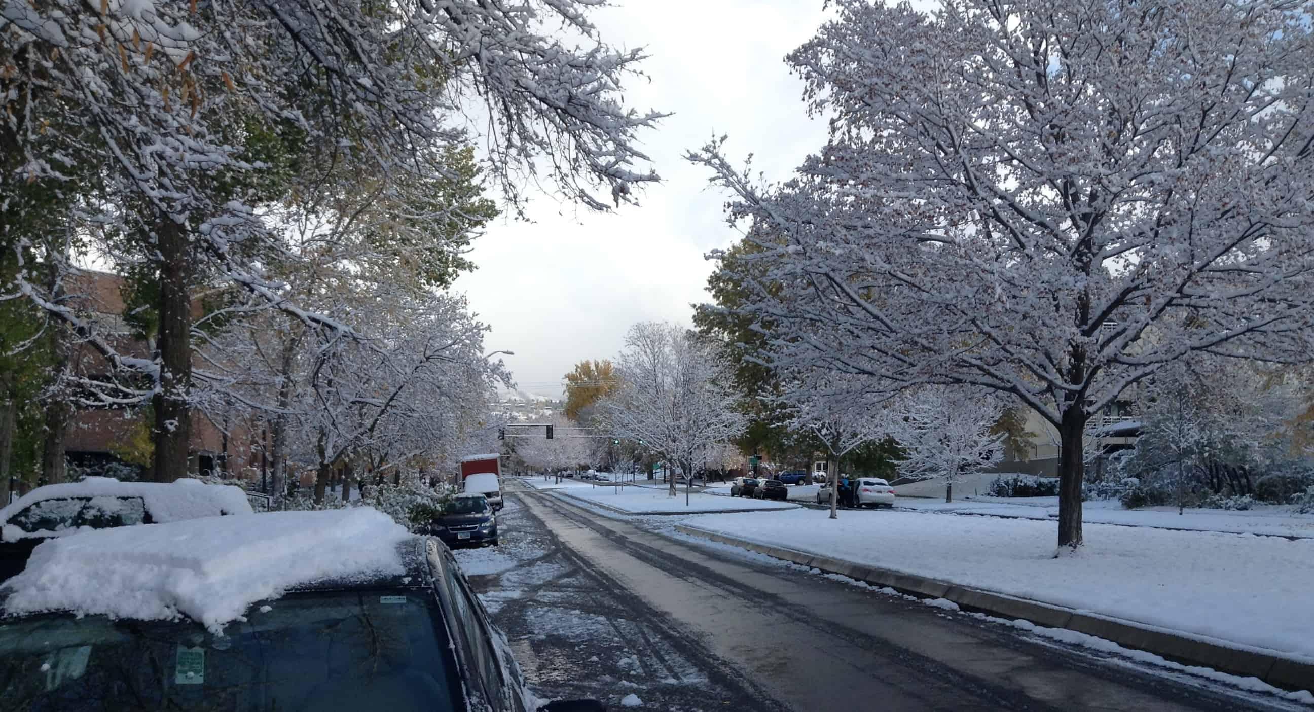First Snow – 2013